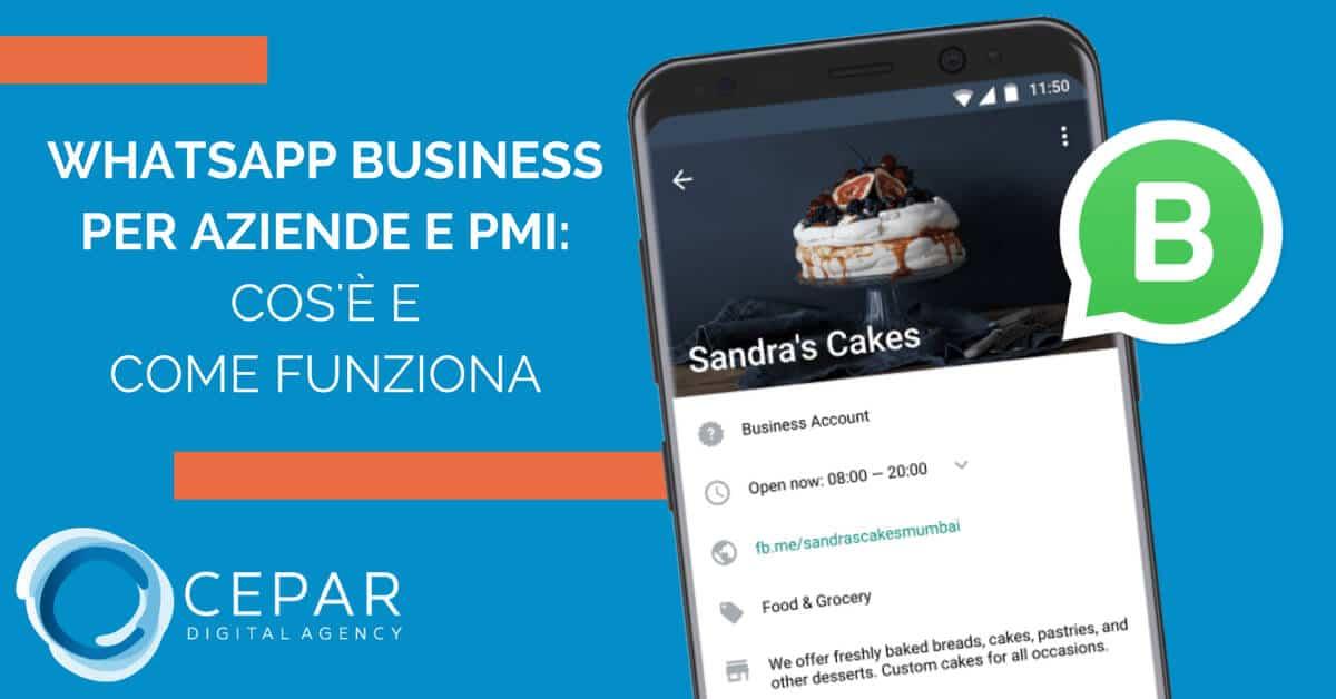 Whatsapp Business Aziende Pmi